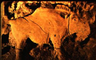 Изображения в пещерата Шове във Франция