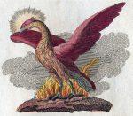 Легенда за птицата Феникс