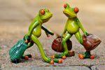 Есенното пътешествие на жабата до топлите страни