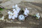 Да измерим времето!