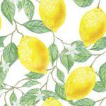 Лимоновото дърво